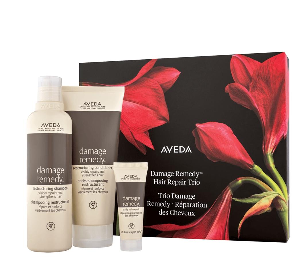 Aveda damage remedy hair repair trio gift set